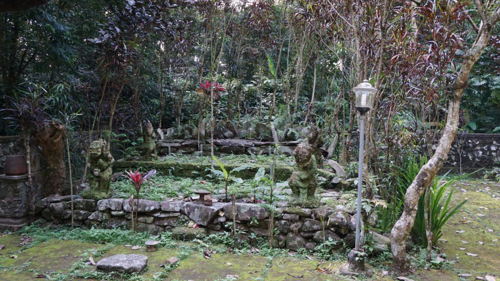 Bali 2649